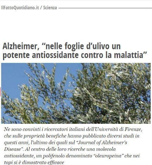 effetti benefici decotto olivo